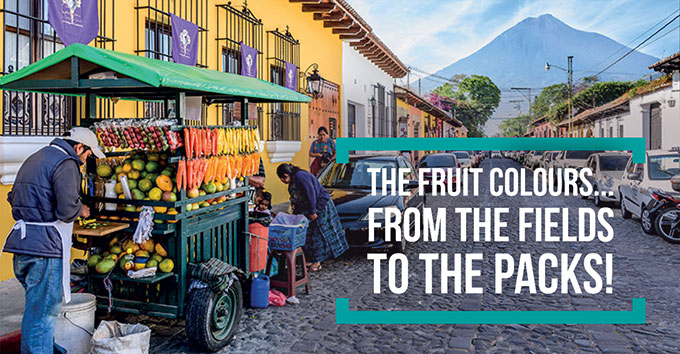 The fruit colours… from the fields to the packs!